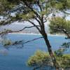Appartement neuf <br>St Cyr sur Mer Les Lecques